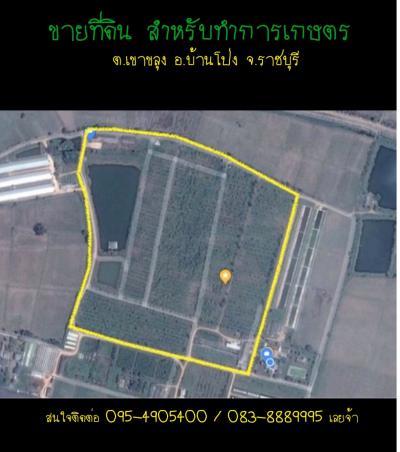 ที่ดิน 28000000 ราชบุรี บ้านโป่ง เขาขลุง